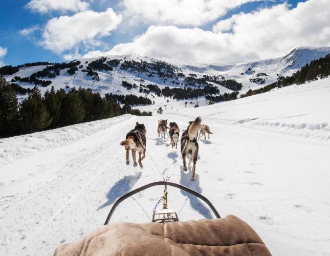 andorra-mushing-invierno